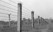 Barbed wire on the former border between Germany and Czechoslovakia: the Iron Curtain divided Europe. (© picture-alliance/dpa)