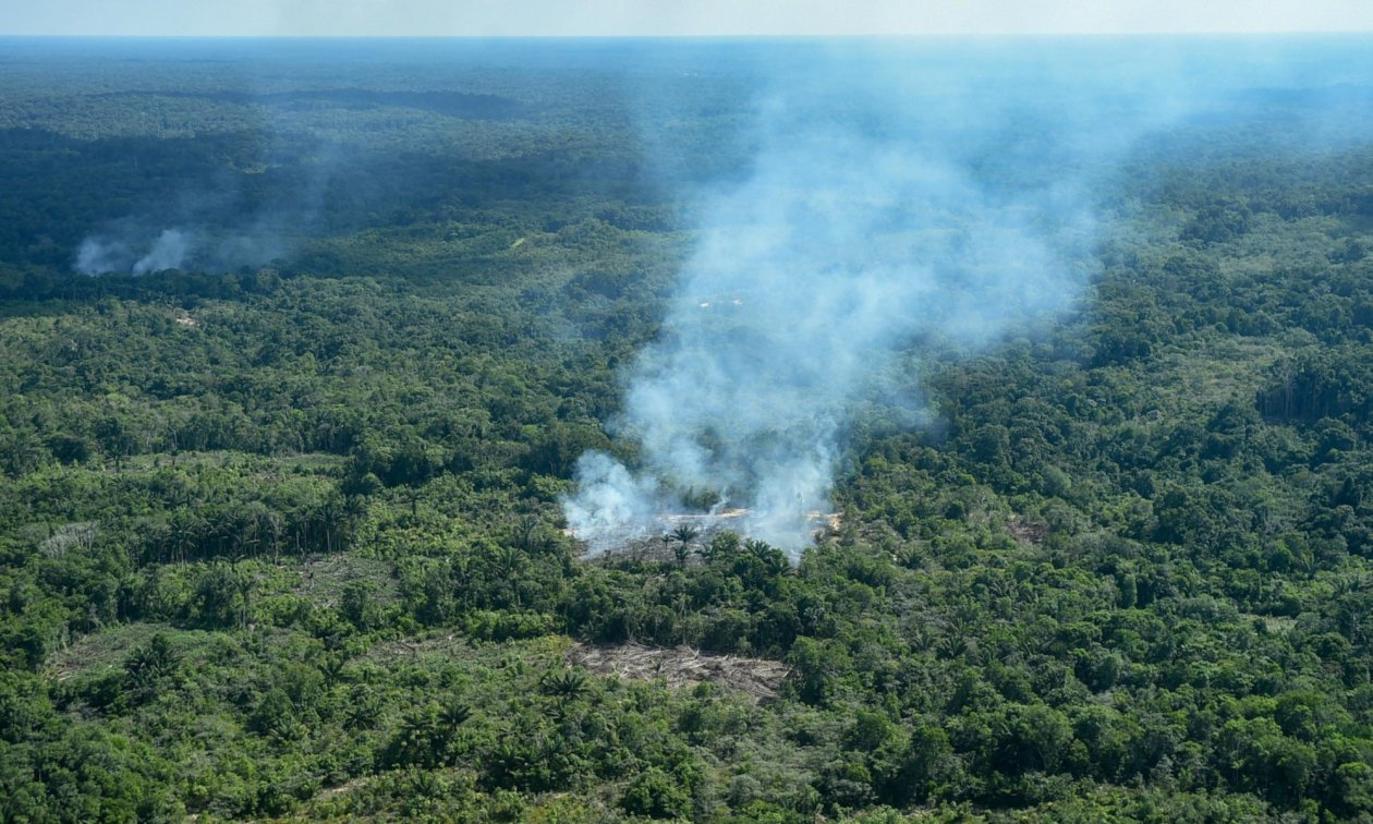 How to fight the fires in the Amazon? | eurotopics net