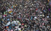 On December 8, the pro-democracy protests in Hong Kong reached a new high with more than 800,000 participants. (© picture-alliance/dpa)