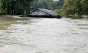 A flooded village in Assam, India. (© picture-alliance/dpa)