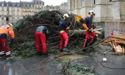 A storm knocked over the large Christmas tree on Place Pey Berland in Bordeaux in 2019. (© picture-alliance/dpa)